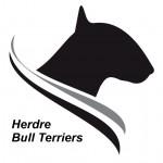 HERDRE (Bull Terrier)