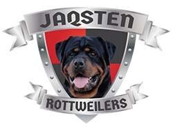 JAQSTEN (Rottweiler)
