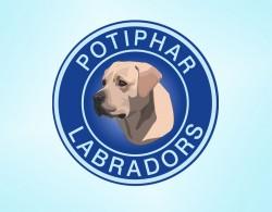 POTIPHAR (Retriever Labrador)