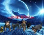 JAGERSFORST (Rottweiler)